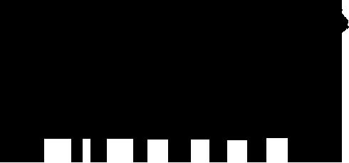 ONYX Fitness logo